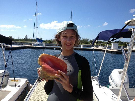 Seven Seas Charters Day Tours : Conch shell