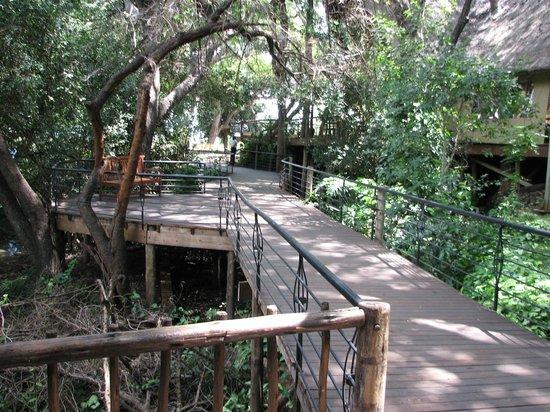 Chobe Safari Lodge: Walking to the restaurant
