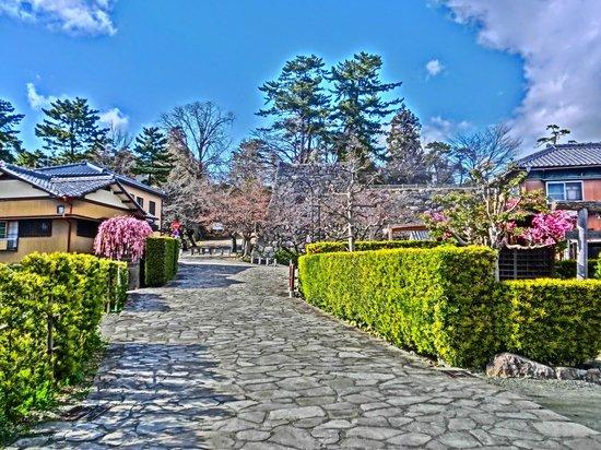 Gojoban Yashiki: 生垣と石畳(絵画調)