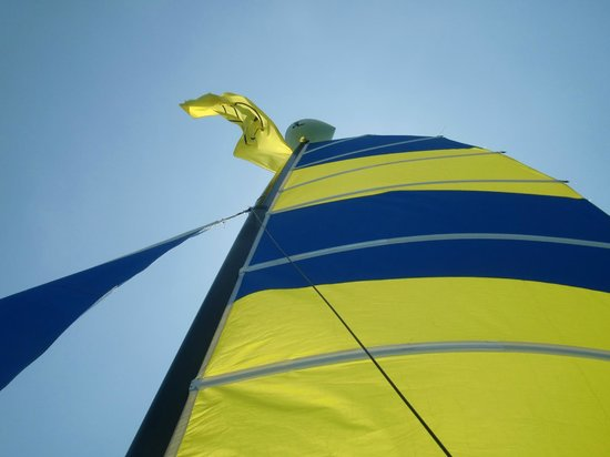 Miami Catamarans - Hobie Cat Sailing Lessons: sail shot