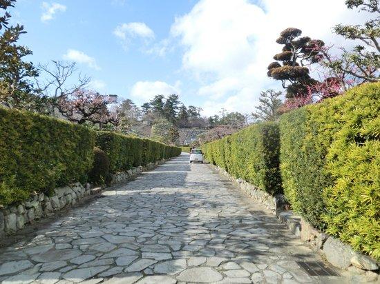 Gojoban Yashiki: 屋敷の生垣と石畳