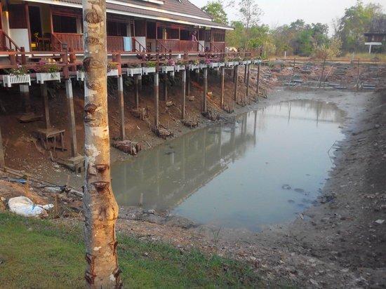 Le Sukhothai Resort: Jolie vue !