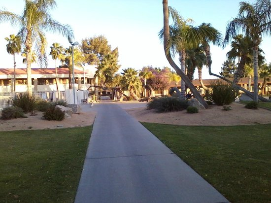 Thunderbird Executive Inn & Conference Center : Grounds in front of Inn
