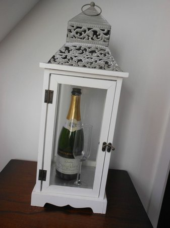Chiltern Valley Bed & Breakfast: Home made sparkling wine
