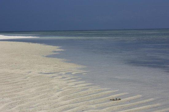 Jumbo Watamu : Lingua di sabbia