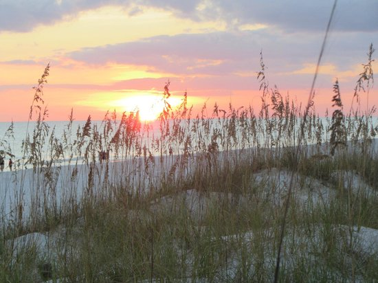 Destin RV Resort : Sea oats and sand dunes at private beach entrance