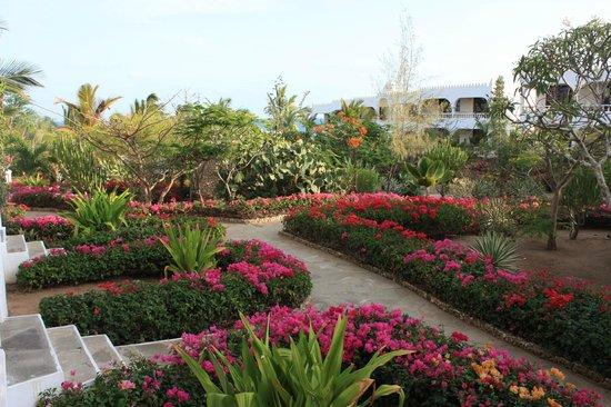 Jumbo Watamu: Giardini del resort