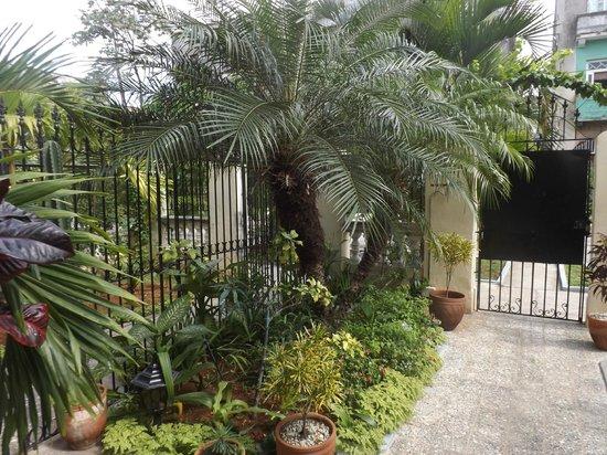 Casa Onelia: The garden