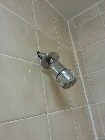 Plaza Hotel: Broken shower head