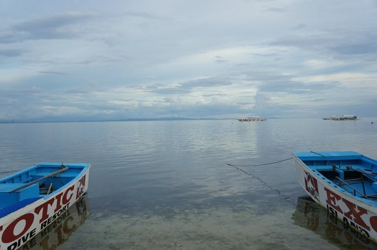 Malapascua Exotic Island Dive & Beach Resort: awesome view