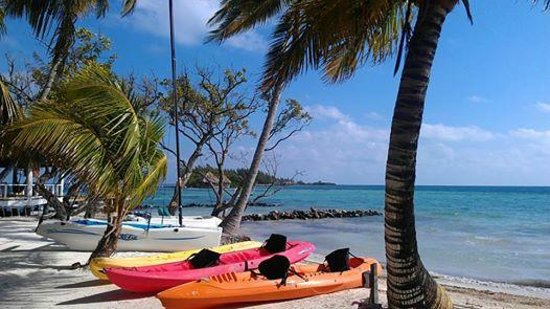 Coco Plum Island Resort: One view