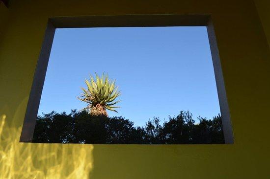 Mymering: Window in pool area