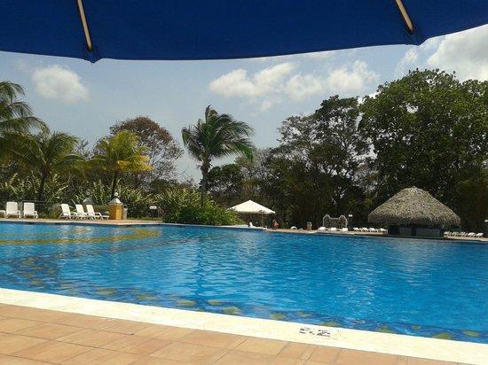 Melia Panama Canal: piscina