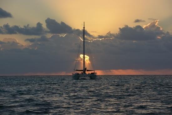 Ramon's Village Resort: view of the catamarans moored around Ramons!