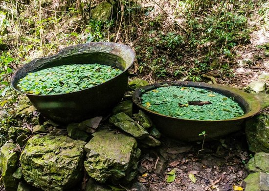Loterie Farm : Random cauldrons on Loterie hiking trails