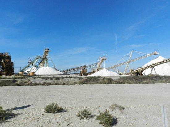 Salin d'Aigues-Mortes: saline