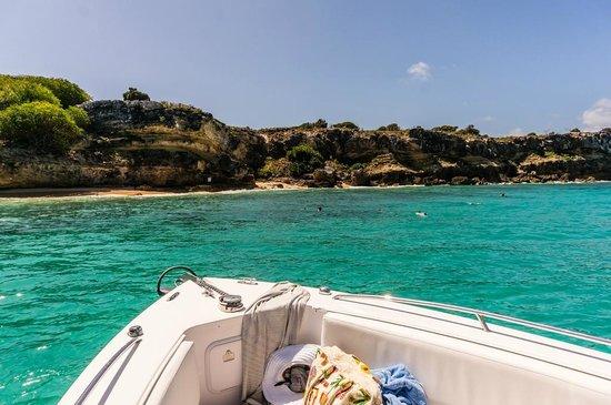 Captain Alan's Three Island Snorkeling Adventure: Tintamarre snorkeling