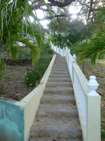 Turquoise Bay Dive & Beach Resort: Stairway to Heaven
