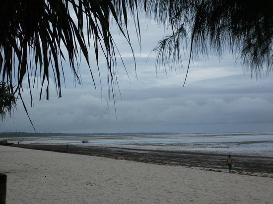 Ocean Paradise Resort & Spa: Strand