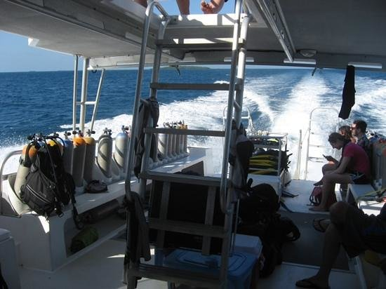 Splash Dive Shop: Dive boat on the back.