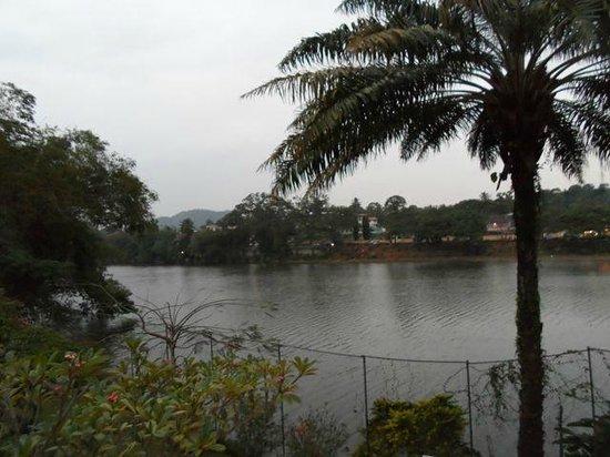 Mahaweli Reach Hotel : The river