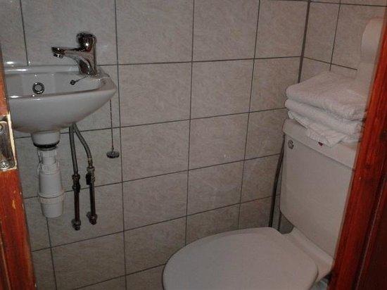 Holly House Hotel: Baño