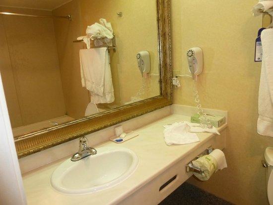 Best Western Airpark Hotel: Baño con mucha luz!