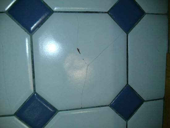 Fairmont Jasper Park Lodge : Bathroom Floor in Room 437