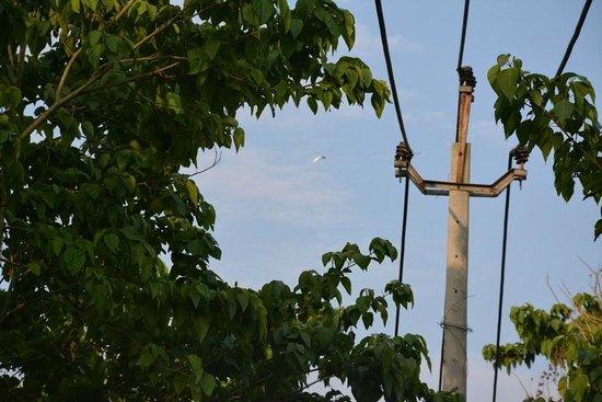 Resort Borgos : view from bird watching zone