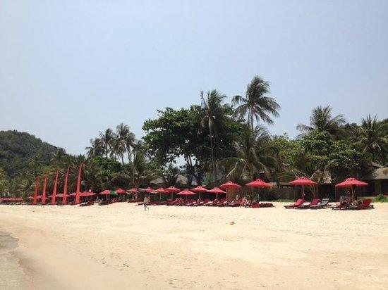 Anantara Rasananda Koh Phangan Villas: Strand mit den Sonnenliegen