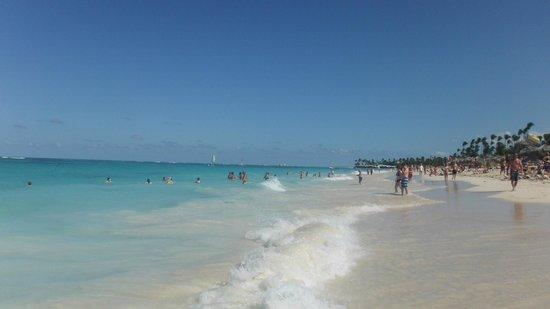 Iberostar Punta Cana: Gorgeous beach!