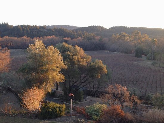 Wine Country Inn & Cottages: Morning view