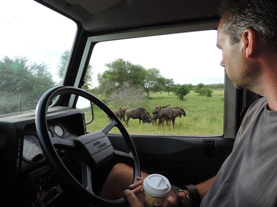 Cheetah Inn: zicht vanuit de jeep