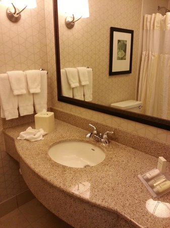 Hilton Garden Inn Rockford : New bathrooms