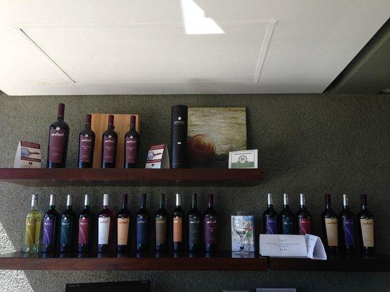 Bodega Melipal: Winery