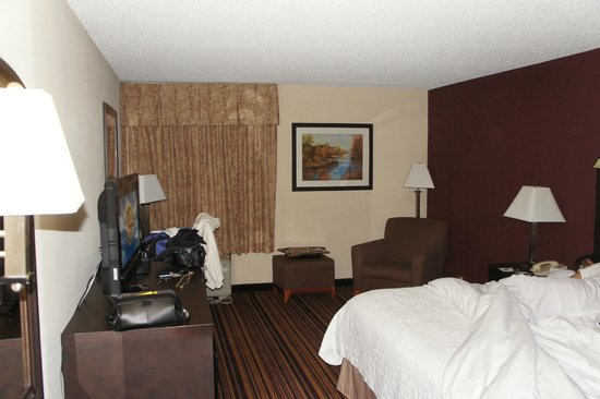 Hampton Inn Newark-Airport: room