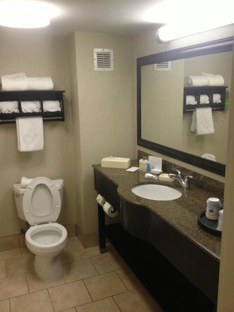 Hampton Inn Newark-Airport: nice updated bathroom