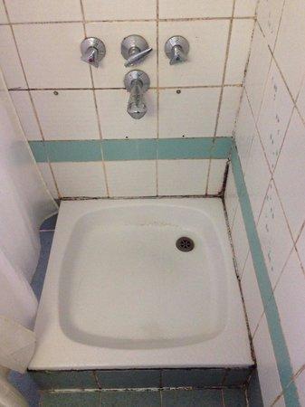 Rush Inn: Shower