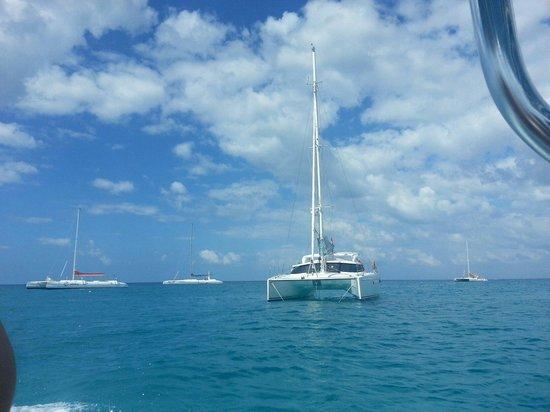 Weiler Caribbean Sea