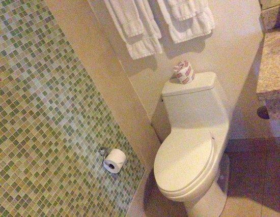 Congress Hotel South Beach: Bathroom