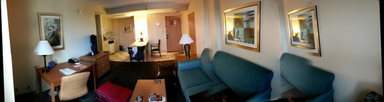 Hampton Inn & Suites by Hilton - Miami Airport / Blue Lagoon: Sala de estar