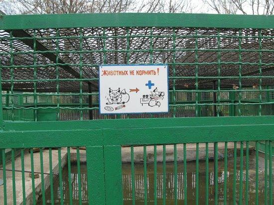 Nikolaev Zoo: Опять визуализация