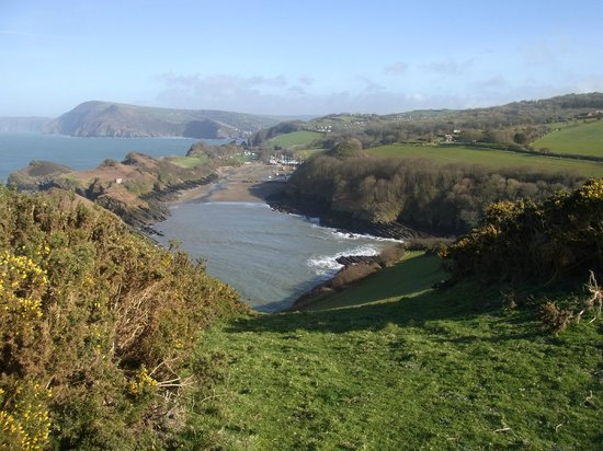 Widmouth Farm Cottages: beautiful views from fields on farm