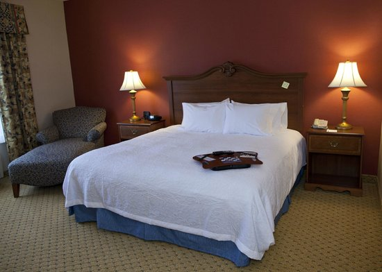 Hampton Inn & Suites Pittsburg: Accessible King Room
