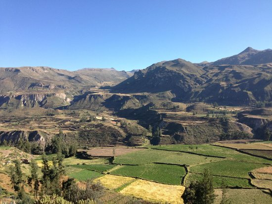Colca Lodge Spa & Hot Springs - Hotel: Views from just above the hotel