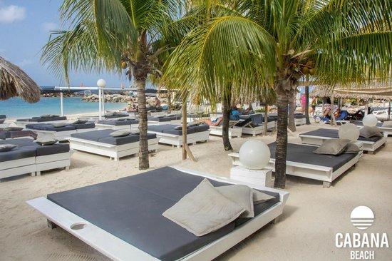 787580817d Beach - Picture of Cabana Beach Curacao, Willemstad - TripAdvisor