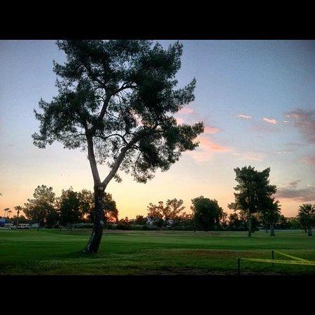 Arizona Golf Resort: Golf Course
