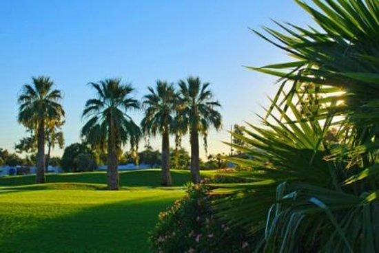 Arizona Golf Resort: Course