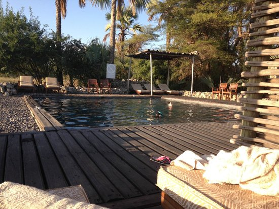Chem Chem Safari Lodge : La piscine