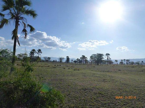 Chem Chem Safari Lodge: La vue depuis notre tente